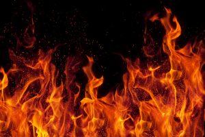 Hot trends in brand building